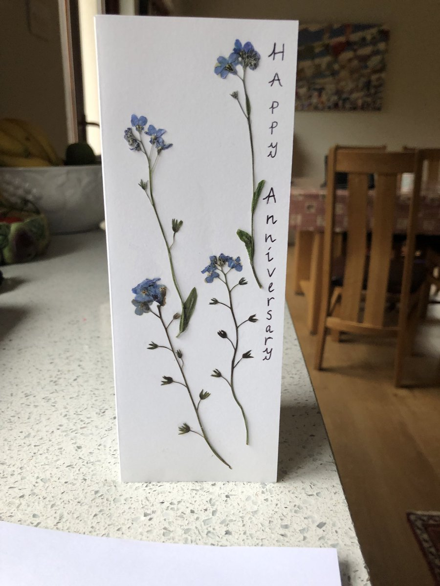 Just have to thank my brilliant wife of 24 years for still having the capacity to surprise me. Home made card with forget-me-nots...#wildflowerhour <br>http://pic.twitter.com/xeIlr74FwH