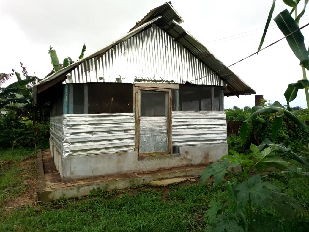 EXPOSED  We tracked a multi million naira  poultry project initiated by the former minister of state for Agriculture and rural development senator Heineken Lokpobiri in 2018 under @FmardNg in modern Govt Sec school  Ekeremor town. Bayelsa State The poultry was POORLY implemented.<br>http://pic.twitter.com/CqCvxdfDc3