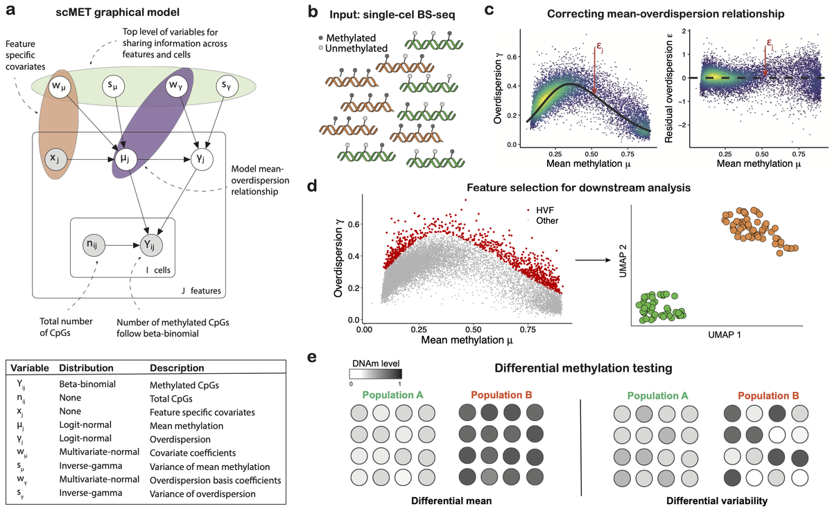 Check our latest method! A hierarchical Bayesian model for quantifying DNA methylation heterogeneity. The stochastic variational implementation ensures scalability to large single-cell data sets https://t.co/yISBB5QGYn