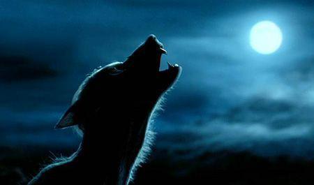 Umlobisomemé um ser humano que, após a completa ascensão da lua cheia, se torna um temível e mortal lobo próximo. Esta condição é causada por infecção por licantropia .Lobisomens aparecem na forma de um lobo , mas existem distinções entre eles e lobos comuns. ++ https://t.co/jLFlzsG9Ay