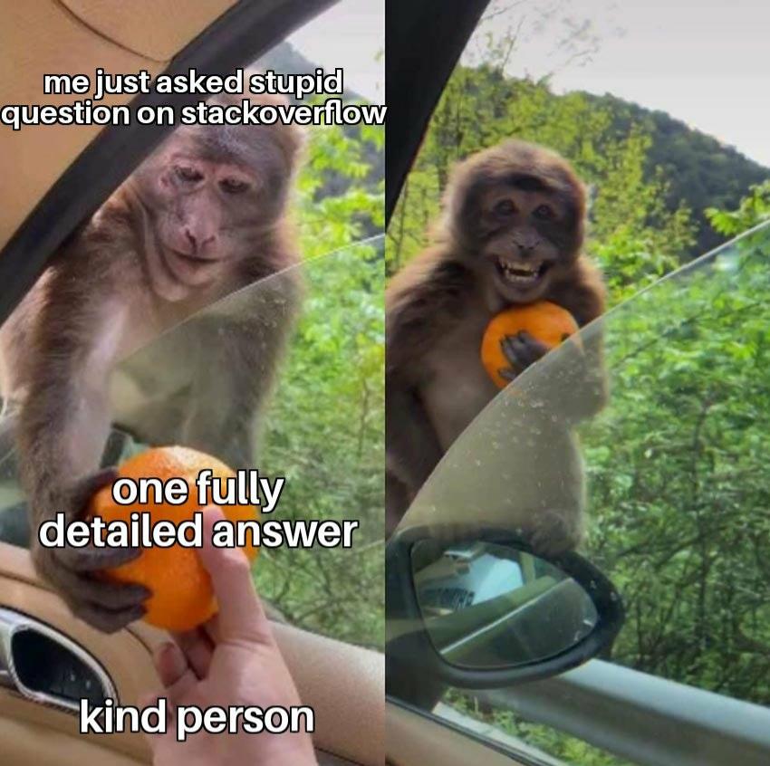 #developer #fun #jokes #programming #tech #code #coding #humor #meme #memes #coders  Thank you kind person ! pic.twitter.com/QoTDwIUhd6