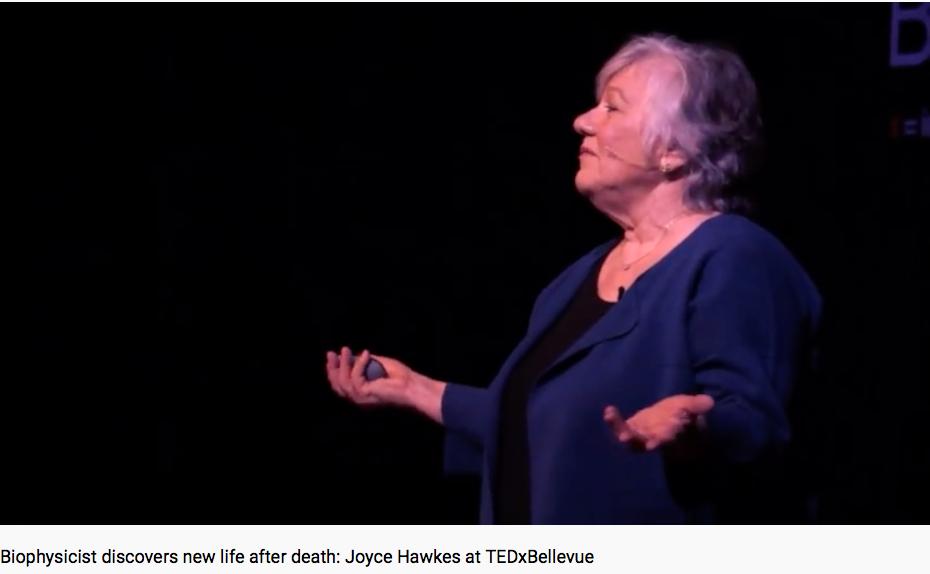 Biophysicist discovers new life after #death https://t.co/uczW43zeUT https://t.co/yANeFGkgnC