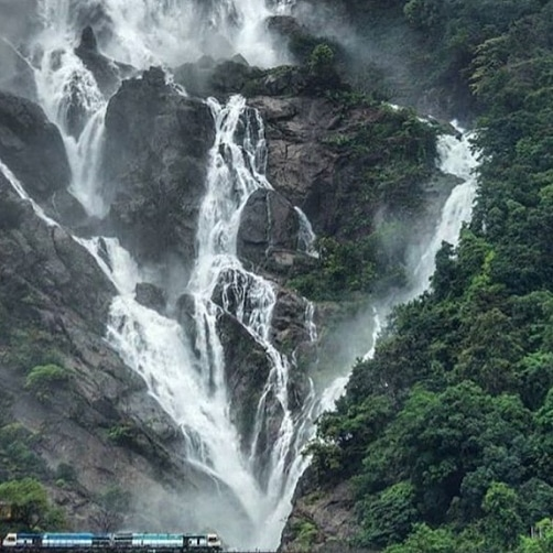 Dudhsagar Falls is a four-tiered waterfall located on the Mandovi River in the Indian state of Goa. #waterfall #nature #travel #naturephotography #photography #waterfalls #longexposure #travelphotography #adventure #landscapephotography #mountains #wanderlust #explorepic.twitter.com/ePgvyTcdWq
