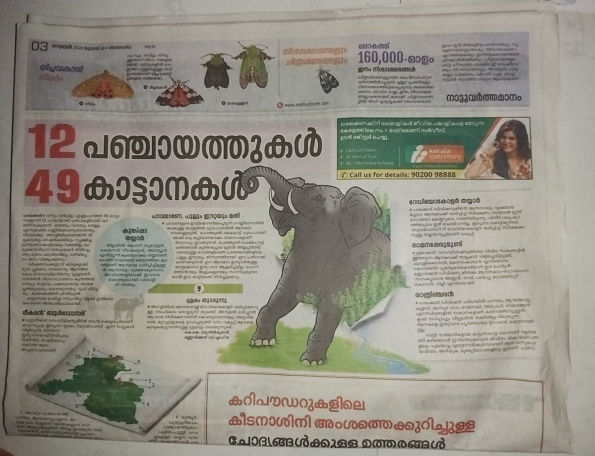 #elephantkerala This is in Palakkad, Kerala. 49 wild elephants in 12 Panchayats in Palakkad. A report in Mathrubhumi, a leading newspaper in Kerala. How can we save ourselves from the attacks of wild animals!? https://t.co/EEXgzzUMD4