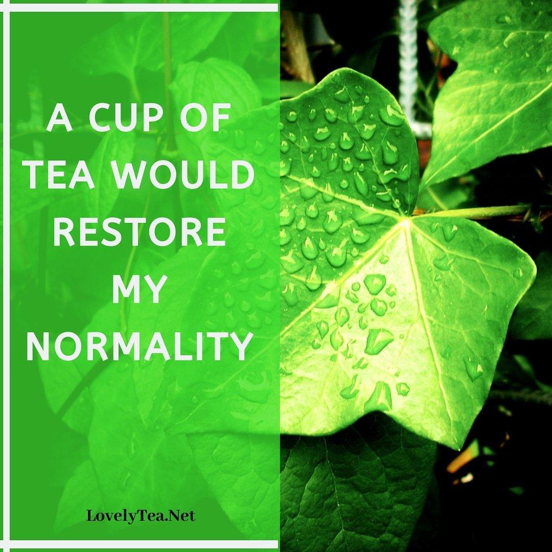 #supportsmallbusiness#motivate #didyouknowfacts #tealovers #tealover  #teaholic  #lovelytea #tealovers#matcha #j#ilovetea #teagram #lovelytea___ #healthy #love #lovelyti2002 #teaandseasons #organic #instagood #morningtea #today  #maydiaries #thoughtspic.twitter.com/aB24OooKRA