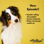 Image for the Tweet beginning: New Episode of @ThePetBuzz Podcast