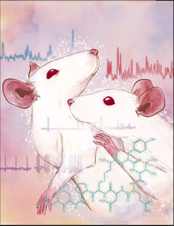 News from lab, just published in Nature Neuroscience today !  Here we demonstrated how social contact promotes motivation for social behaviors, through release of ... guess what: oxytocin.  https://t.co/BspDDiuUon  PS: Still looking for a rocket-like postdoc fellow :) https://t.co/4IwrT6d6sj