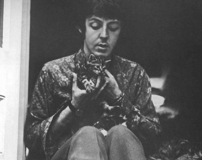 Paul McCartney The #Beatles via @starkeysgarden