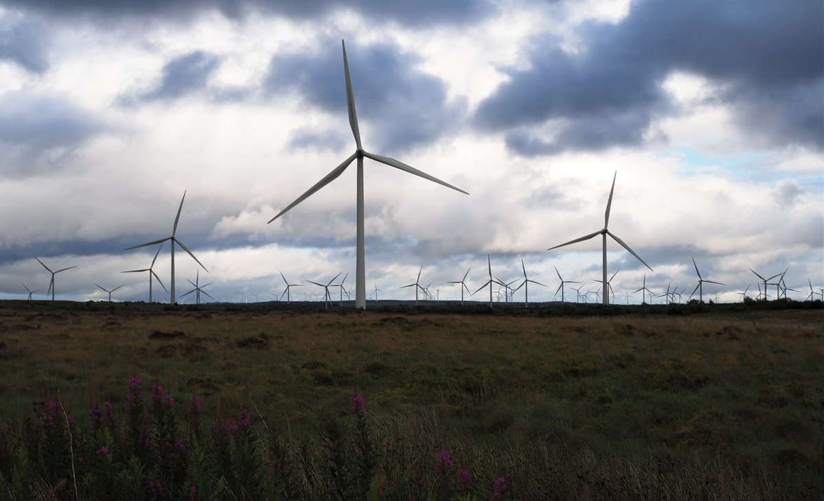 One way to blow the cobwebs away for the week ahead... #windfarmwalk