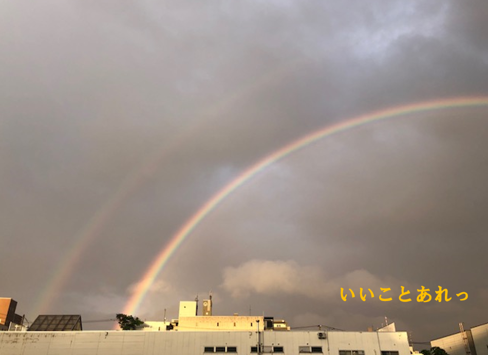 虹プロ 二重