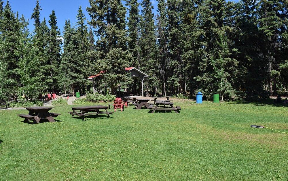 Байгальд хог хаяулахгүй аялуулах арга уг нь бдаг. Уулын ам, голын тохой бүрийг recreational land болгон эзэмшүүлэх. Эзэнтэй ууланд хог хэн ч хаяхгүй.  Тусгайлан бэлдсэн жорлонтой, хогийн савтай, ширээ сандалтай, галын цэгтэй camping/picnic site-ууд орон нутгууд бэлдэх хэрэгтэй шд https://t.co/nH0avTqi6N