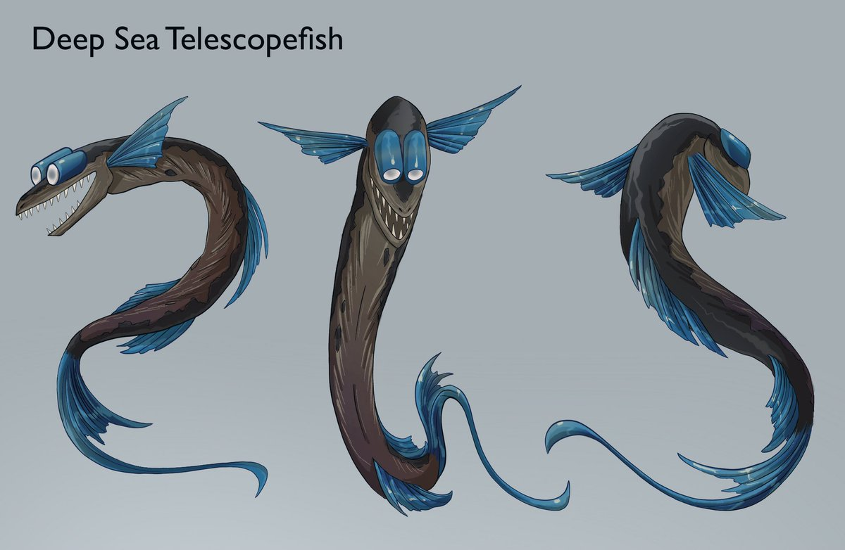 Deep sea Telescopefish turn around. These fish live in the mesopelagic zone and use thier large telescoping eyes to pick up faint light from thier bioluminescent prey. Any suggestions for another sea creature I should do? #ArtistOnTwitter Original pretty boy pic also included.💙 https://t.co/XAA1YU0Owg