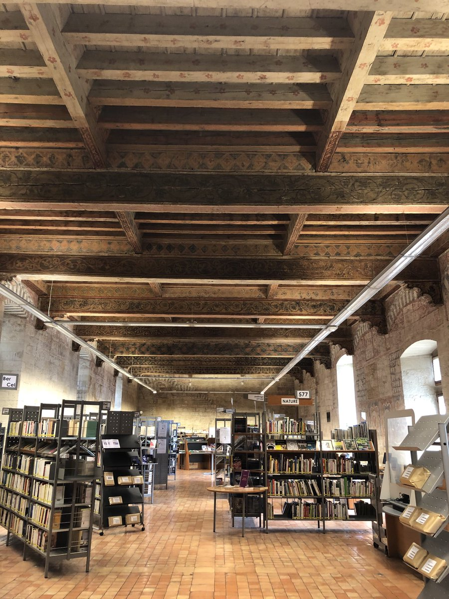 When you go to the Avignon public library to research a document....and find yourself in the 14th-century Ceccano palace, home to Annibal de Ceccano, created cardinal by Pope John XXII https://t.co/495qqxRvjI