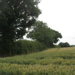 Image for the Tweet beginning: CPRE Bedfordshire joins Pertenhall &