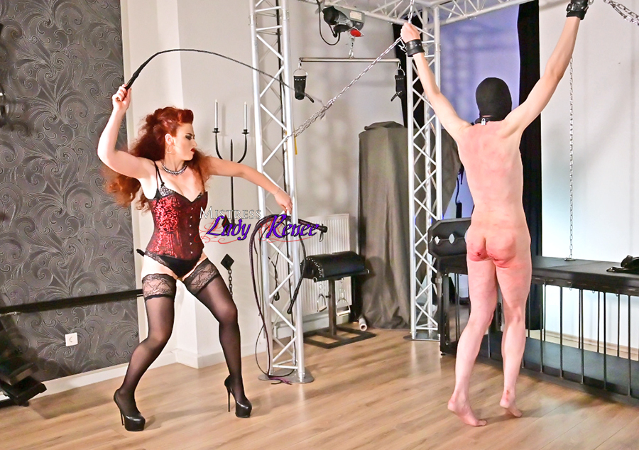 Whipping a slave bitch clips4sale.com/108228/23508081 #CP #corporalpunishment #FemDom #FemaleDomination #bullwhipping #singletailwhipping #whipping #bullwhipped #whipped #BDSM #stockings #highheels #Mistress #Herrin #Maîtresse #Padrona @LadyRenee_