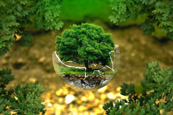 ¿Quieres que un #MedioAmbiente natural sano sea un nuevo artículo a la Declaración Universal de Derechos Humanos? 👉 https://t.co/X9azetXDRu @Agroinformacio #ONU #naturaleza #cerramientos #fence #clôture #MoredaRiviereTrefilerías #MRT #CelsaGroup https://t.co/GSMbsHM8Eo