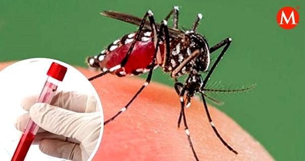 #Tamaulipas con 151 casos de dengue  → https://t.co/irIQNqhEqy https://t.co/5NO564mDb5