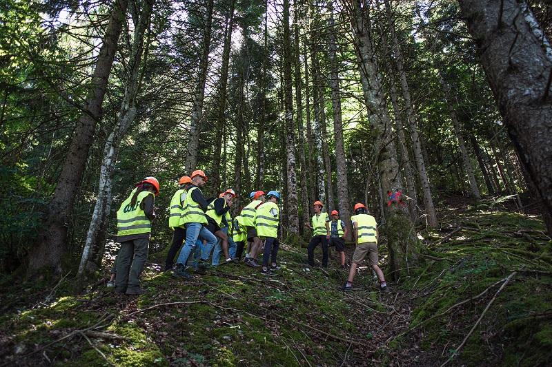 """[agenda] 🗓 Découvrez les #métiers de la #forêt et du #bois le temps d'une journée avec """"vis ma vie de bûcheron"""" : le rendez-vous nature et pédagogique de l'été dans les forêts d'Auvergne-Rhône-Alpes ! 🌳🌲👷♂️ Infos et programme 👉 https://t.co/QSsR2aU5ld https://t.co/e319Z3m7kT"""