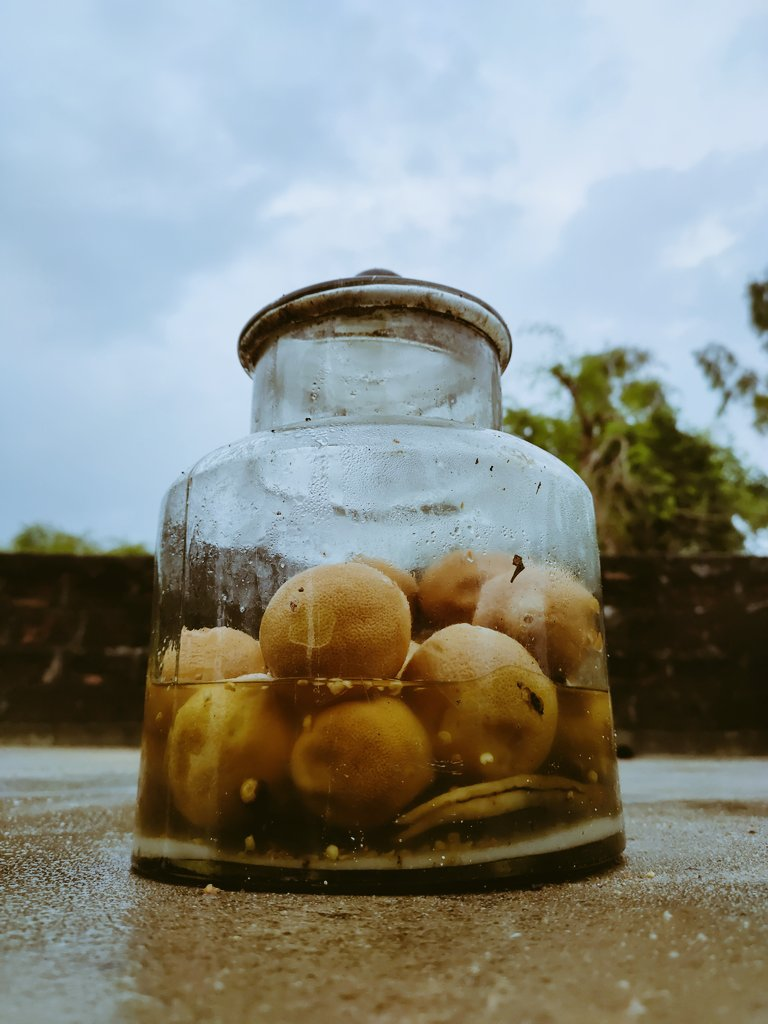 Mere pas acchaa camera bhi nahi hai aur gaon se bhi hu isliye koi like nhi karta. 😣 #nofilters #photography #photographylovers