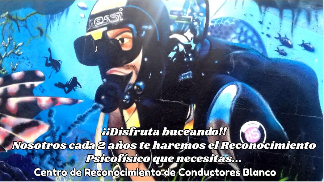 buceo #diving #scubadiving #scuba #padi #underwater #dive #underwaterphotography #ocean #diver #sea #scubadive  #uwphotography #scubadiver #photography #marinelife #paditv #plongee #underwaterphoto #submarinismo #plong  #mar #underwaterlife #nature #travel #LasPalmasDeGranCanaria