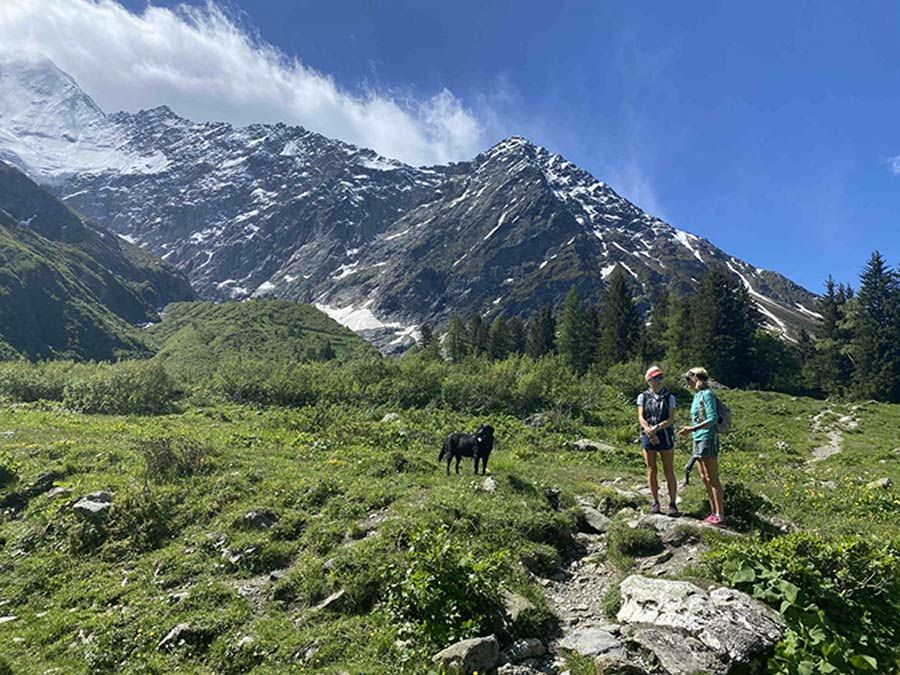 Read about the experience of a client who has just completed the westerly trek of the #tourdumontblanc in her captivating blog  https:// buff.ly/2ZDtaeB     #lifeafterlockdown #trekconditions #trekupdate  #hikingblog #trekkingblog #walkersblog #walkingtour #carpediem #seizetheday <br>http://pic.twitter.com/9XOnKa1jf6