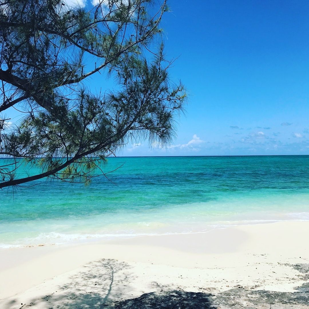 Reopening Announcement: Turks & Caicos opens to international travelers July 22nd. Insider tip: South Caicos has had zero #COVID__19 cases since the start.  Feel free to reach out with any questions on hotel options and safety protocols  #Travel #Caribbean #turksandcaicos