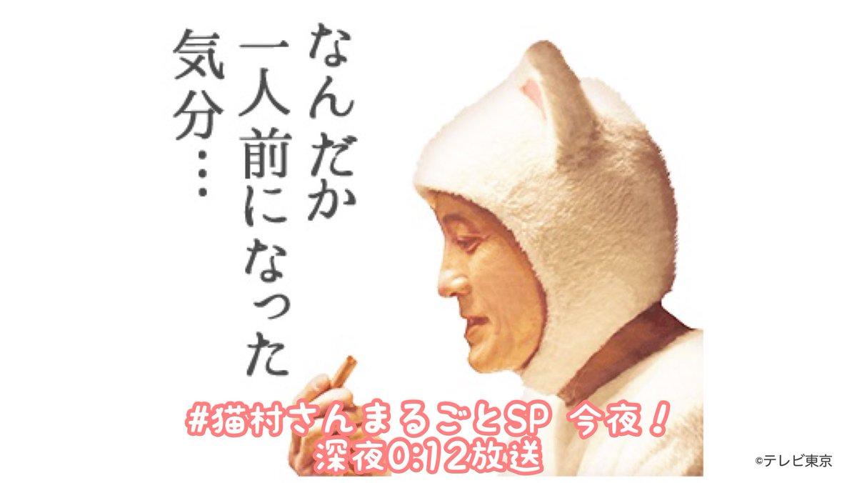 さん テレビ の 東京 村 きょう 猫