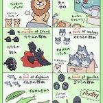 ライオンはプライド、キリンはタワー?!動物の群れを表す英語表現が面白い!