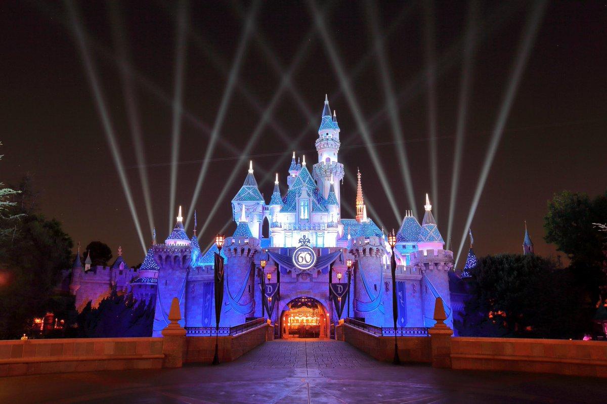 Amateur Going To Disneyland