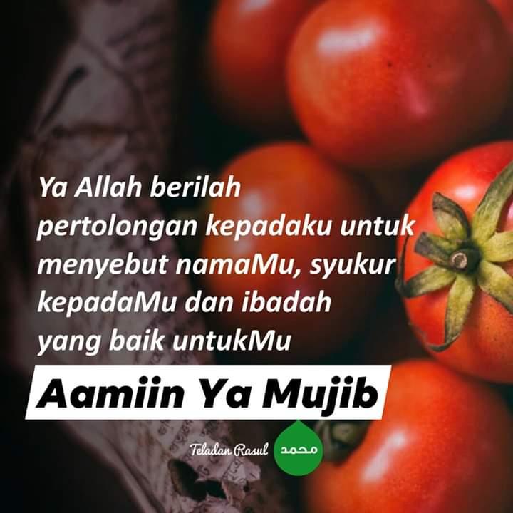 Assalamu'alaikum wbt 😊  Selamat pagi 😍  26 Zulkaedah 1441H  #salamDhuha https://t.co/WD1TUlblIy