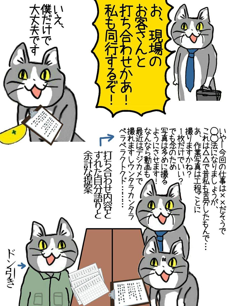 仕事がんばる現場猫さん。上司同行の打ち合わせでもがんばる。
