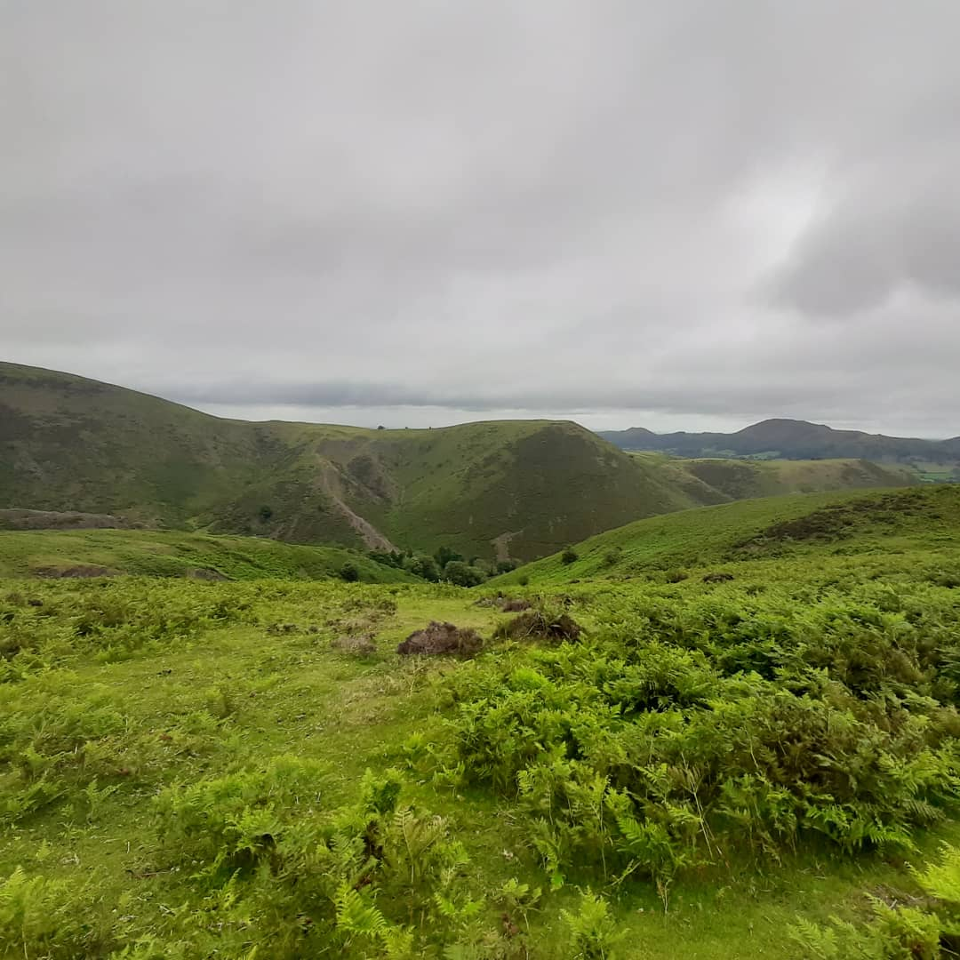 Walked up #LongMynd today. Beautiful view. Killer Hill. https://t.co/xwu5eDaJQw