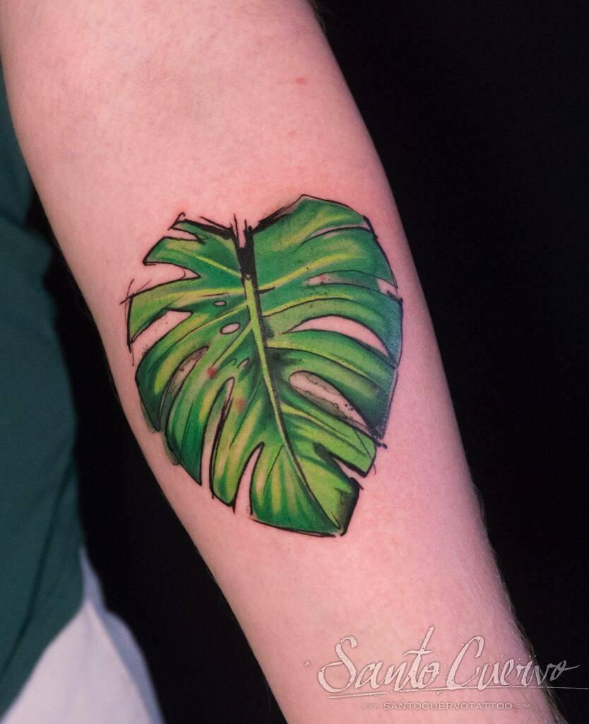 Monstera Deliciosa  -  Sponsored by: @hellotattoomed @greenhousetattoosupplies  #planttattoo #plantlife #monstera #monsteratattoo #watercolourtattoo #tattoo #tattedup #tattooart #tattoostudio #tattoolovers #ink #inklife #inked #tattooartist #londontattooartist #tattooing #ta…pic.twitter.com/KJaw5g0iwp