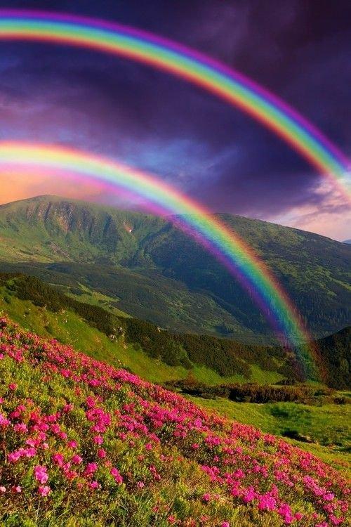 @GGPokerOfficial @WSOP Rare and beautiful like a double rainbow 😍 ! Nick : Toudur Good luck!