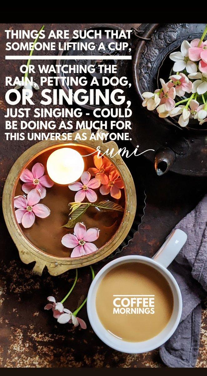 The rainy morning coffee 🤎. . @madebygoogle #phonephotography #coffeemornings #lovecoffee #madewithkitchenaid #gurgaondiaries #coffee #inspiration #coffeequotes #motivation #morningslikethese #whatidoallday @GoogleIndia @madebygoogle #Rumi https://t.co/WFbezIPPCi