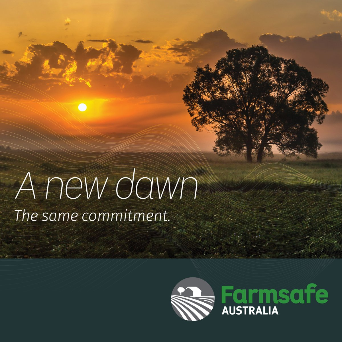 This week (20 - 24 July) is National Farm Safety Week 🙌 Make sure to keep an eye on @FarmsafeAust's page throughout the week as they discuss Farming for a Future 🚜🌾  #FarmSafetyWeek #saferfarms #farmsafeaustralia https://t.co/HFi23UOsoP