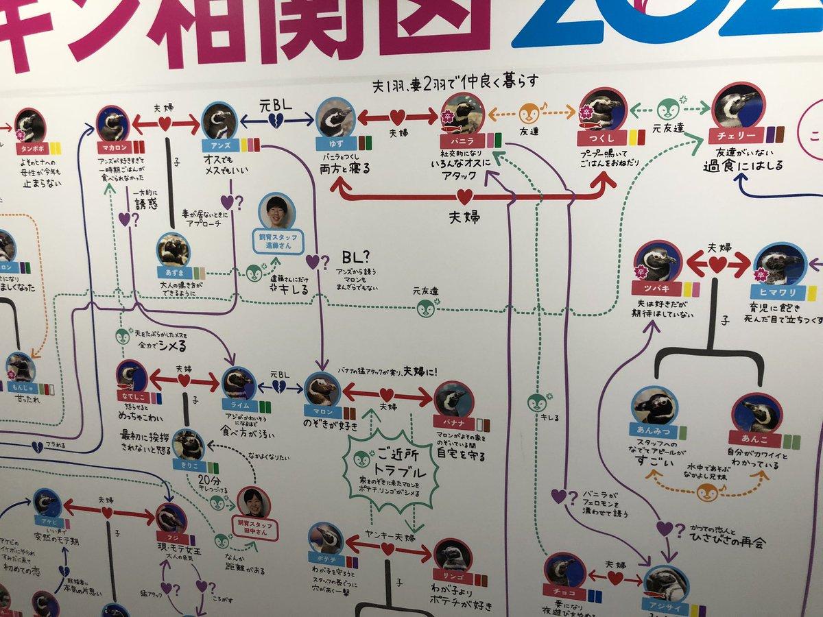 Topics tagged under 企鵝 on 紀由屋分享坊 EdWNr1KVAAI3k1H