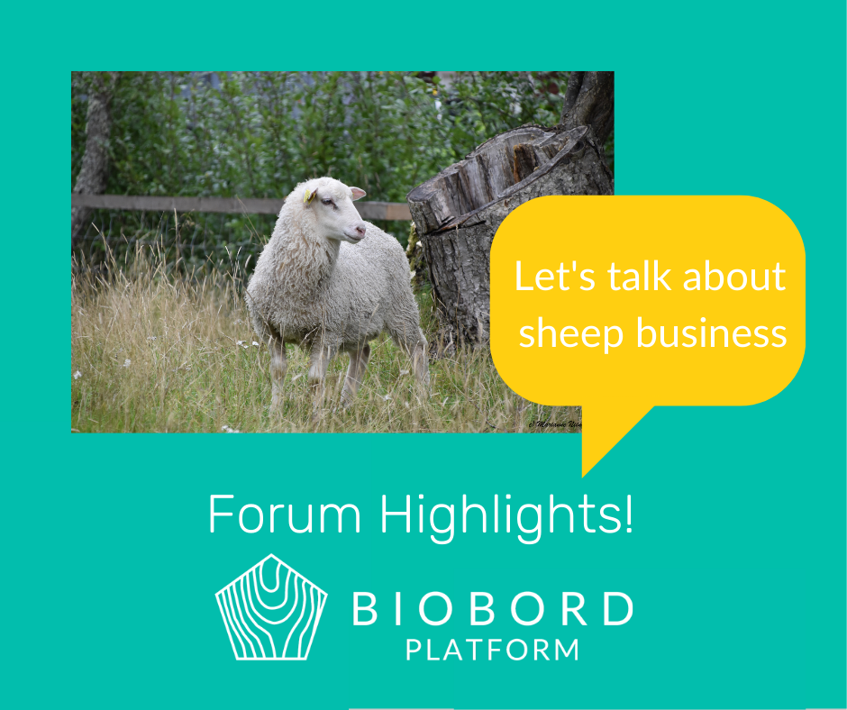 As #Interreg projects are about #cooperation & exchange of experiences, join now #Biobord by @RDI2CluB to talk about #bioeconomy. #MadeWithInterreg #Interreg30 #BalticSeaRegion #BSR #innovation