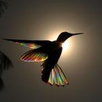 Image for the Tweet beginning: 📸 PHOTOS 📸  Le photographe animalier