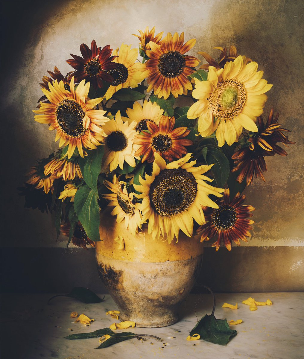 Coustellet market sunflowers https://t.co/8AXIUhGl6s
