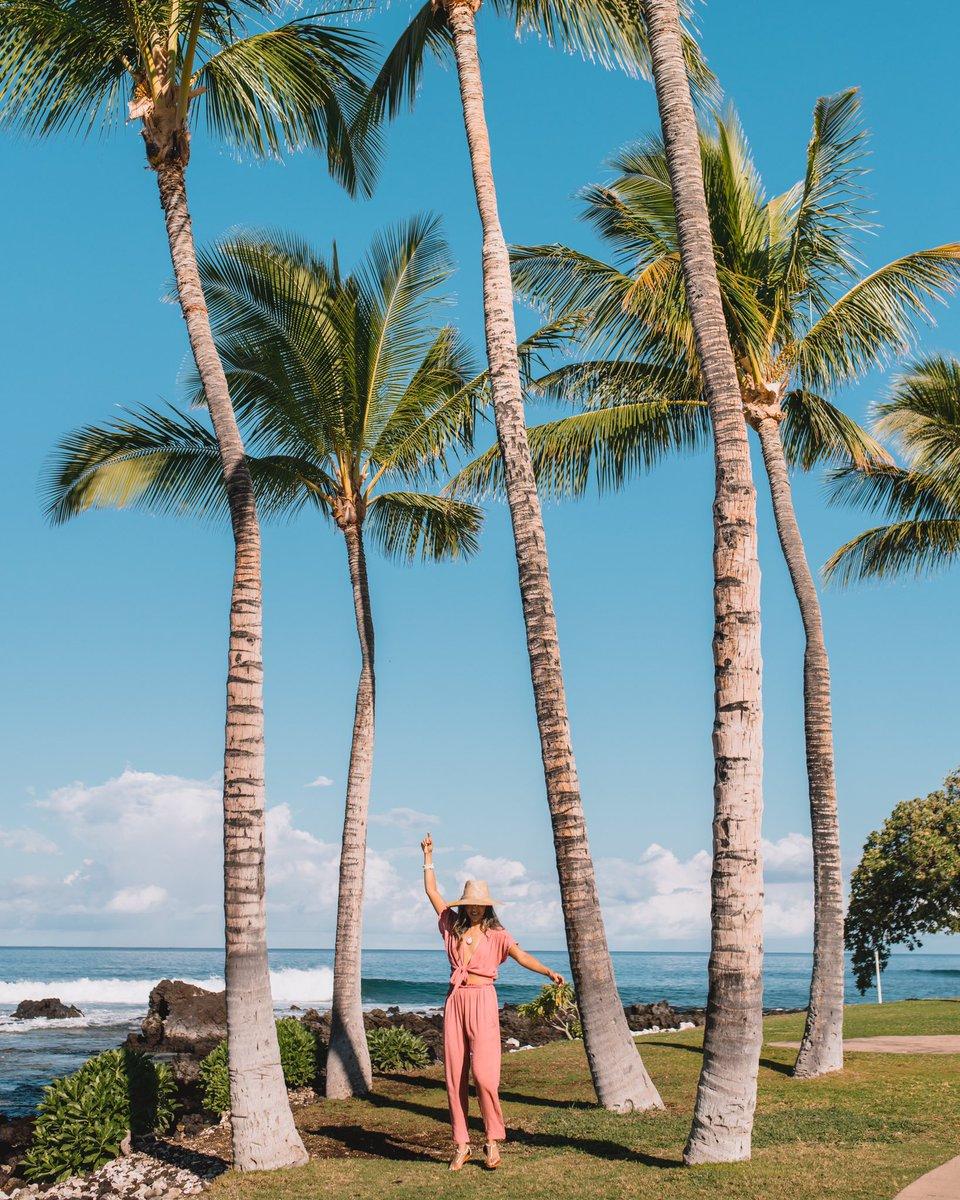 Make today amazing!  📸 @jyo_shankar  #FairmontOrchid #Hawaii #OnlyAtTheOrchid #MondayBlues #HawaiiIsland #Fairmont #FairmontHotels #FairmontMoments https://t.co/ZJjVmDdn5u