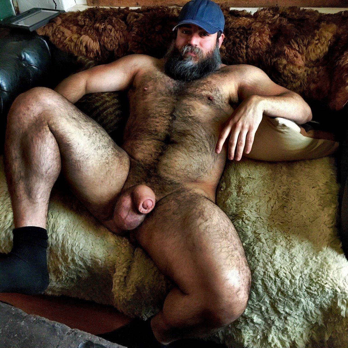 Bear gay hairy hot