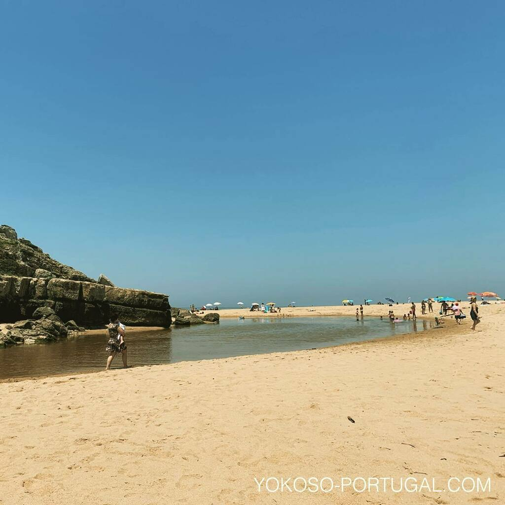 test ツイッターメディア - 川でも海でも遊べるビーチ、Foz do Lizandro。 #エリセイラ #ポルトガル https://t.co/AvbUi1MOjQ