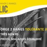 Image for the Tweet beginning: IDILIC la nouvelle #variété #ORGE