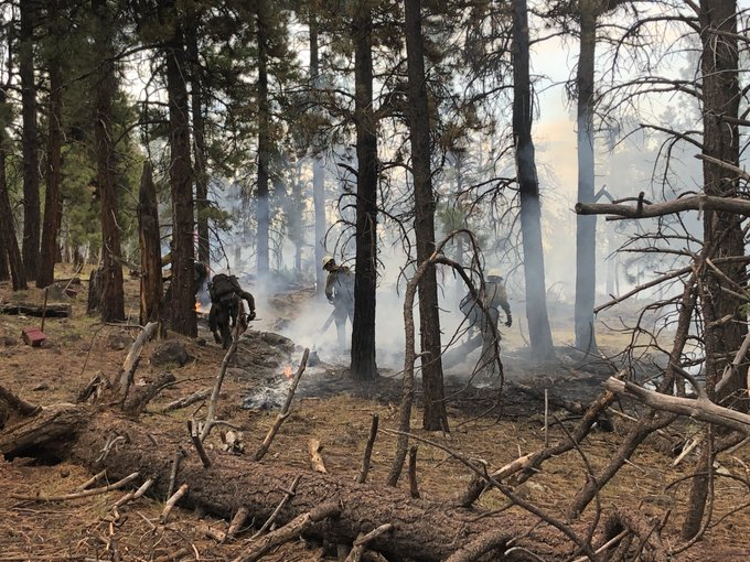 Handcrews building fireline on the #StrawberryFire.  Photo courtesy of Kevin Greenhalgh.