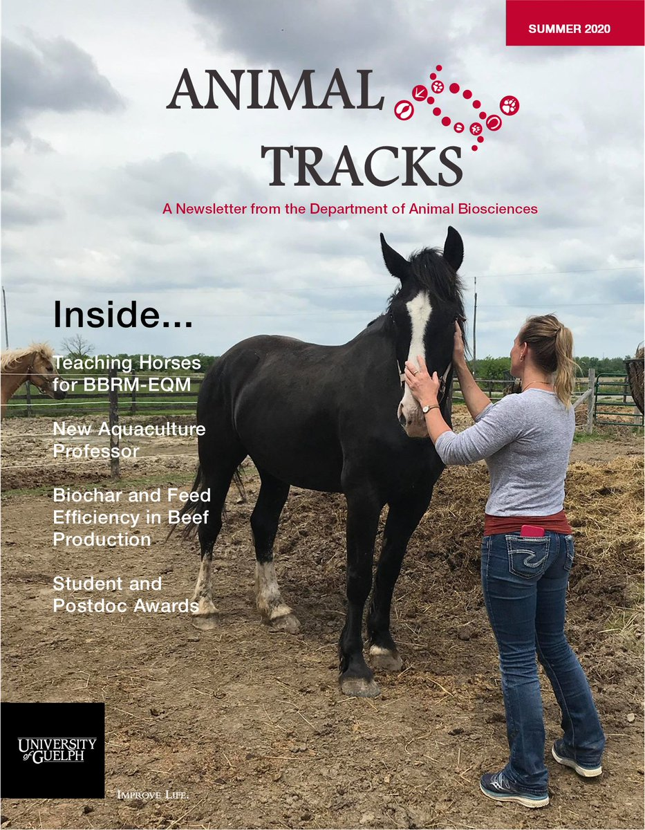 The Summer 2020 issue of Animal Tracks-A Newsletter from the Department of Animal Biosciences is now available! Catch up on what has been happening in ABSc! 🐕🐈🐤🐄🐟🐑🐎🐖  https://t.co/ZHVmxFXmCT https://t.co/Sn7IbAkDbZ