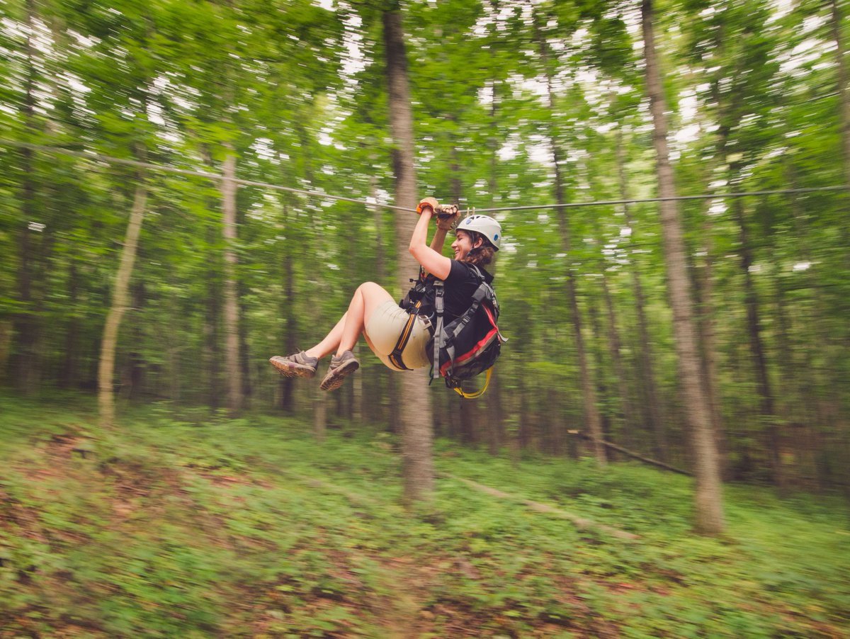 Zip on! Use code JTW2020 online or by phone to save $70 per person on a Treetop Zip Tour through July 31! #ziplining #TravelTuesday #adventure #adventuretravel #thegreatoutdoors https://t.co/hguli4NFKV