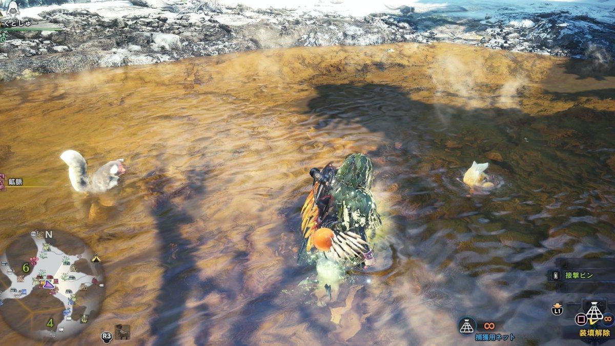【さるは金色、かわいいな】レア環境生物のキンセンザルがかなりの高確率で出現するようです☺️攻略班はエリア6で確認しました!温泉に潜ってます♨️今の所確定で出現しています!隠れ身を来てても近づくと逃げたので、見かけたらさっさと捕まえましょう!#アイスボーン#MHWアイスボーン