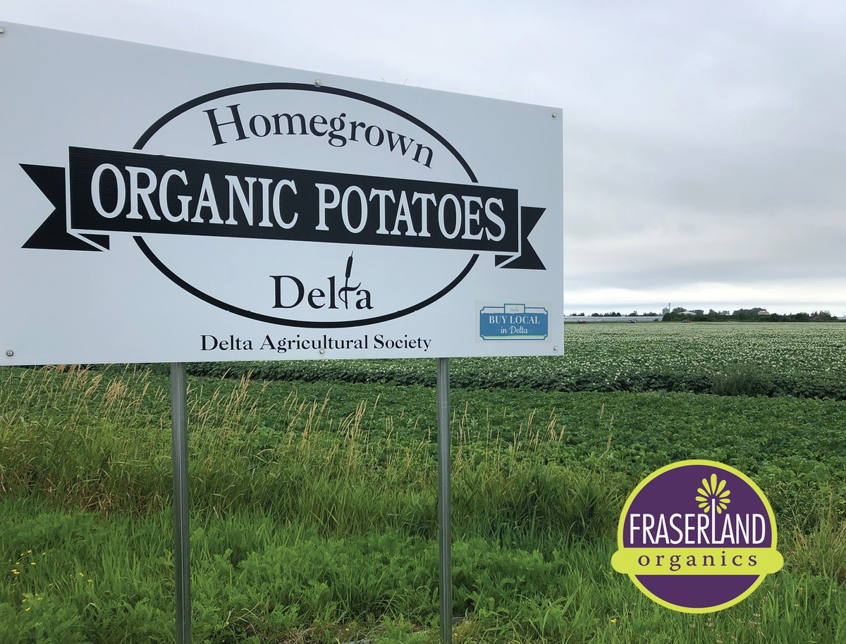 Buying local still gives the choice of fresh tasting, high quality products grown right here in your community. #organicpotatoes #buylocal #supportingfarmers #ladnerisawesome https://t.co/ppeAIatLia