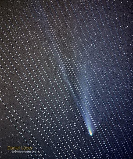 From Daniel López's Facebook: https://www.facebook.com/elcielodecanarias.es/photos/a.224658390885198/4415045628513099/?type=3&theater  Cometa y pase de satélites Starlink 😢. . Anoche, tratando de realizar un seguimiento del cometa con un 200mm y la Canon Ra de Canon España, para sumar las imágenes y conseguir más detalle, hubo un pase de satélites Starlink justo delante del mismo. Una pasada y pena ver pasar todos esos puntos luminosos, en total casi 20 imágenes del cometa muestran trazas. Montaré el time lapse en cuanto pueda. La imagen es la suma de 17 fotos de 30 segundos de exposición, por eso se ven tantas trazas.  #DanielLopez #elcielodecanarias #canonespaña